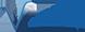 VisionAsset Logo